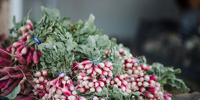 Mediterranean Diet Plant Based Health
